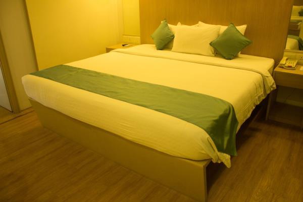 Super Saver 4 Star Hotel - MG Road - Delhi Image