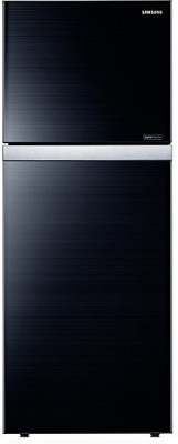 Samsung RT42HAUDEGL-TL 415 L Double Door Refrigerator Image
