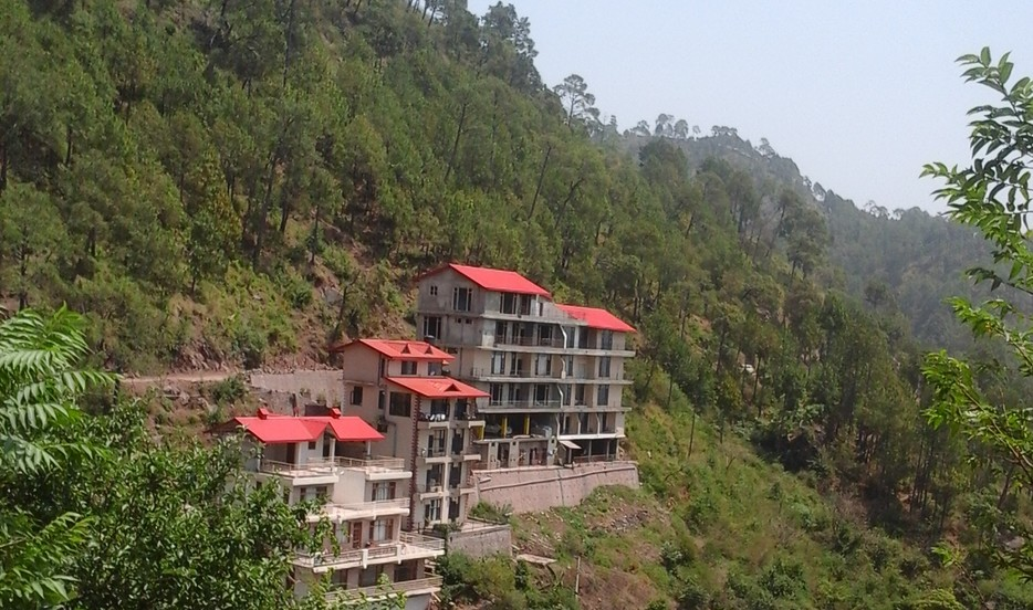 Whispering Pines Home Stay - Dharampur Image