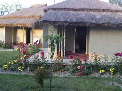 Sunderban Jungle Camp - Gosaba Image