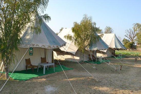Jawahar Resort - Malah Village - Bharatpur Image