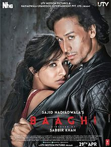Baaghi (2016) Image