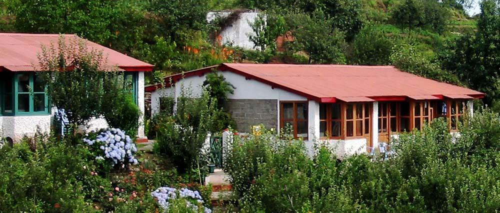 Green Hill Resort and Camp - Mukteshwar - Nainital Image