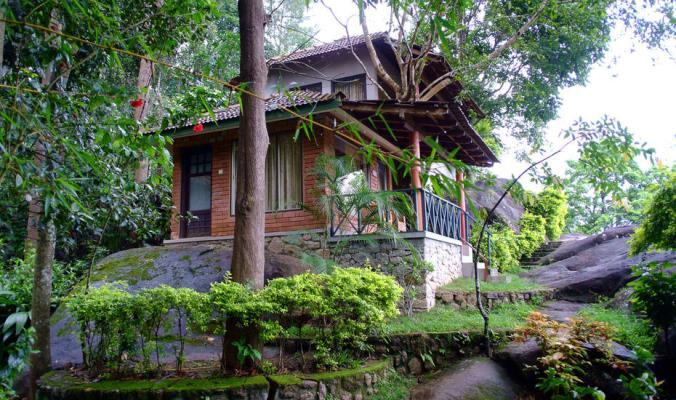 Edakkal Hermitage - Wayanad - Kalpetta Image