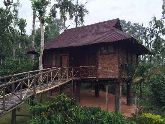 The Treasure Trove Home Stay - Meenangadi - Kalpetta Image