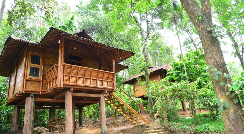 Trekking Trails Eco Lodge - Shanti Nagar - Kalpetta Image