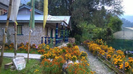 Dara Gaon Village Retreat - Pelling Image