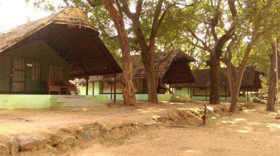 Jungle Lodges Bheemeshwari Nature & Adventure Camp - Bheemeshwari - Mandya Image
