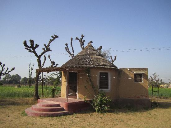 Shekhawati Guest House - Nawalgarh Image