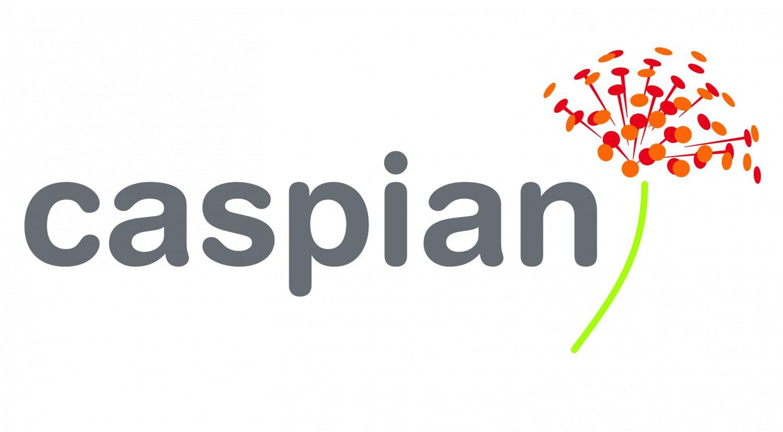 CASPIAN IMPACT INVESTMENT ADVISER PVT LTD Questions and