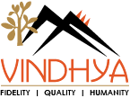 Vindhya E-Infomedia Pvt Ltd Image