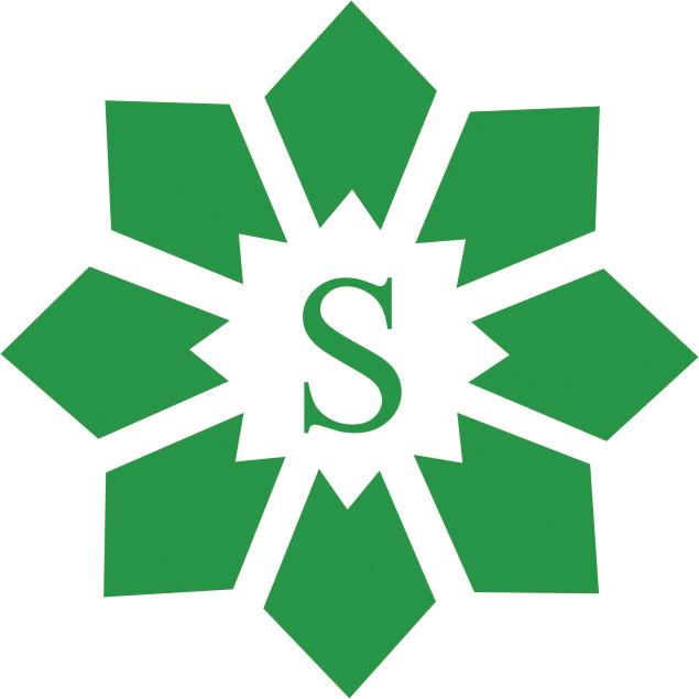 Sagar Cements Ltd Image