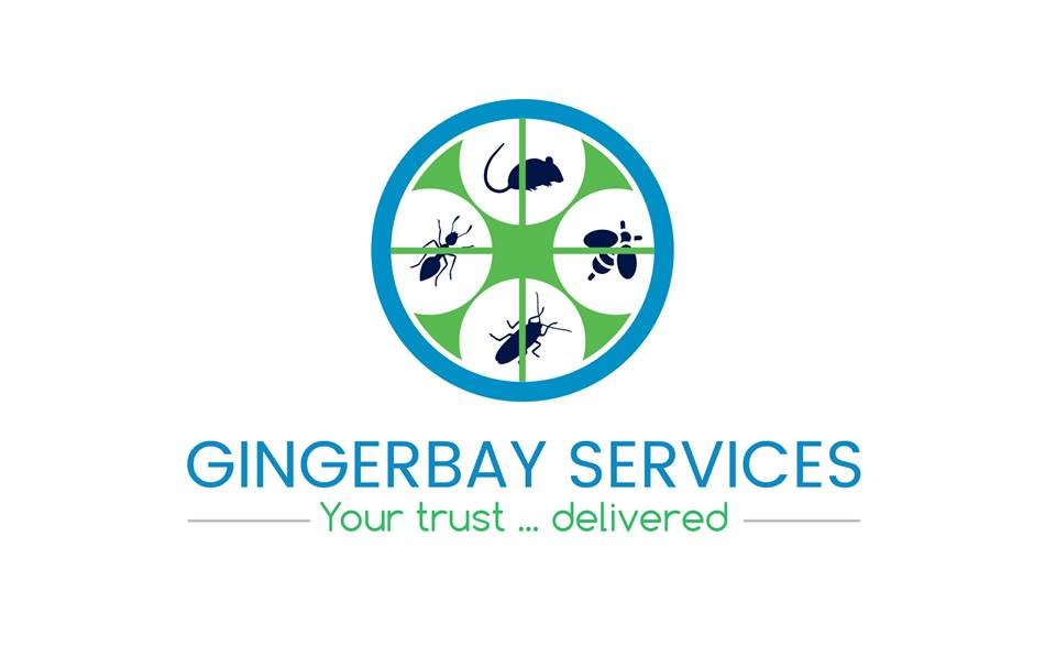 GingerBay Services Image