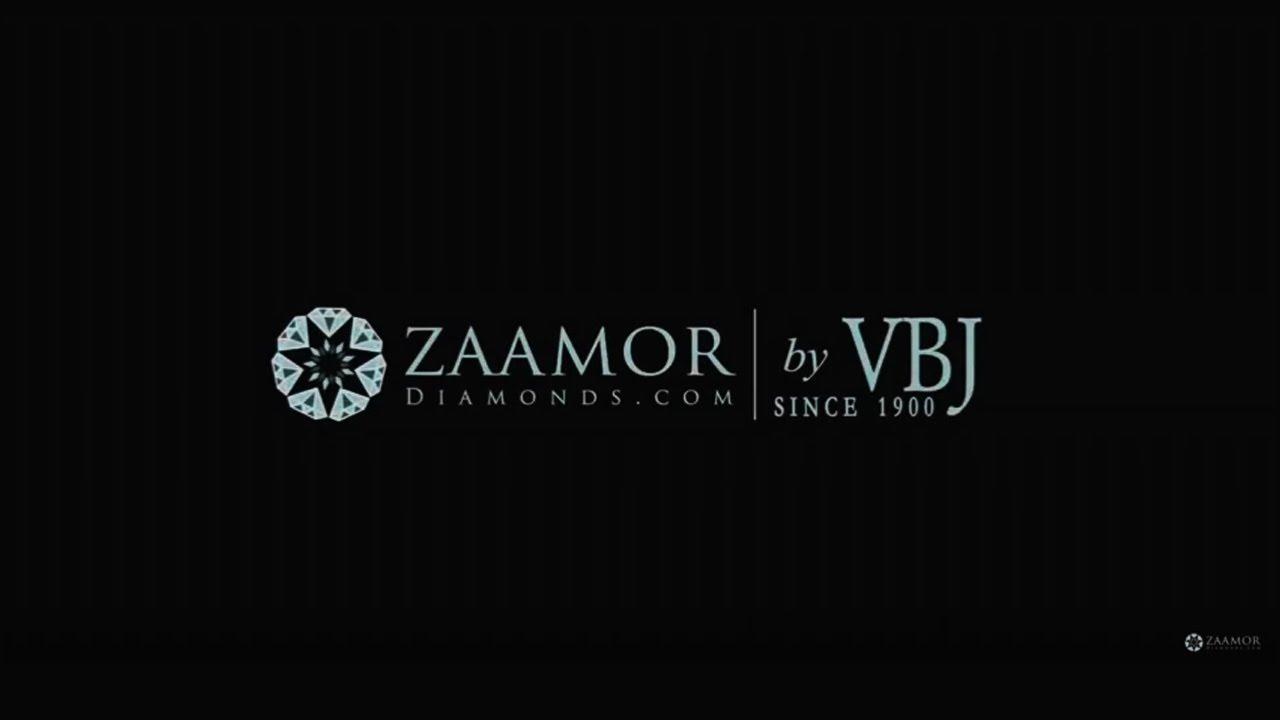 Zaamor International Lifestyle Pvt Ltd Image