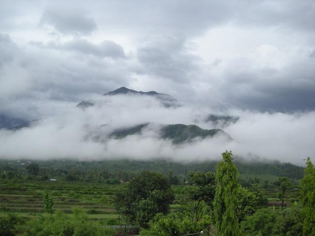 Gajraula Image