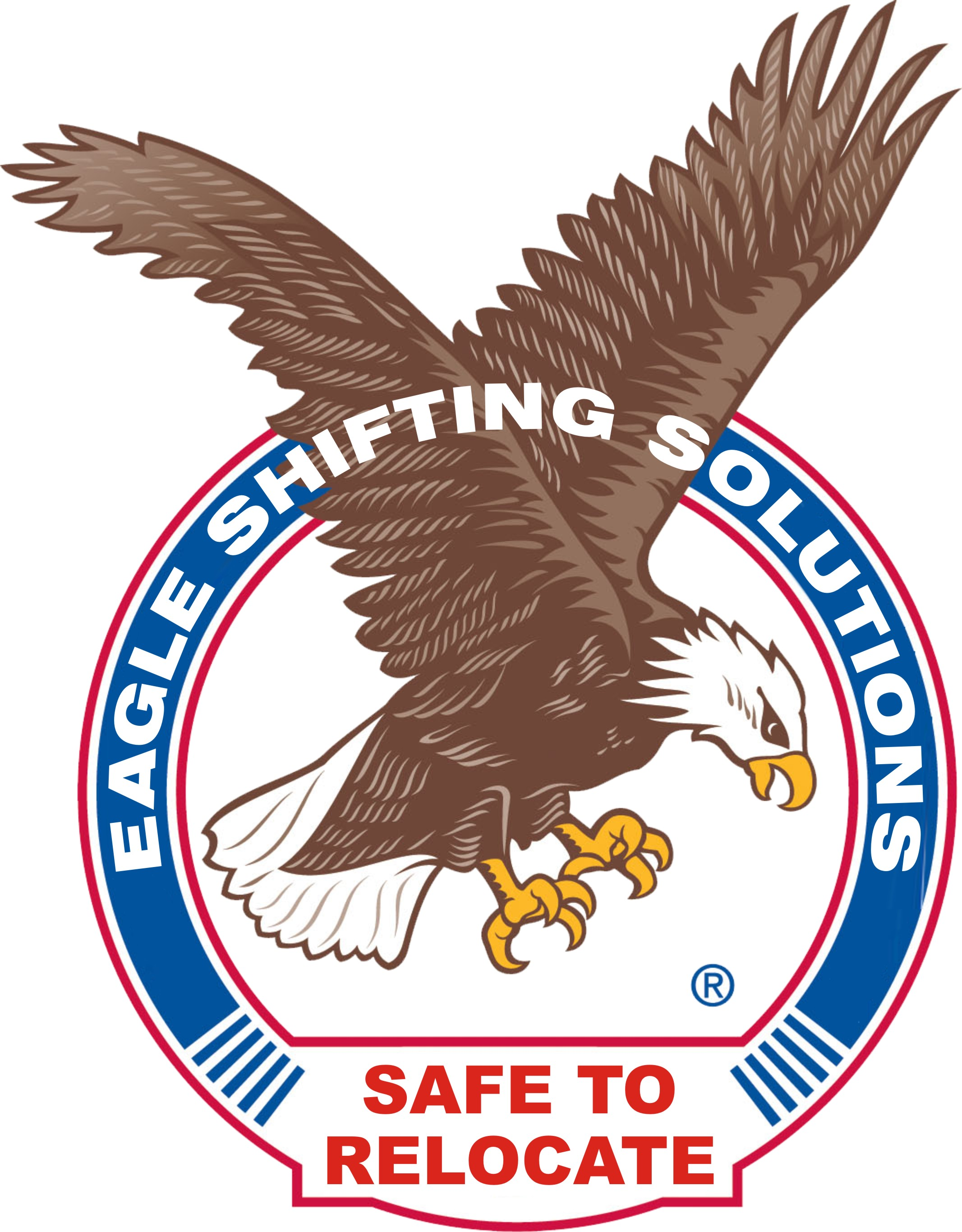 Eagle Shifting Solutions Packers & Movers Image