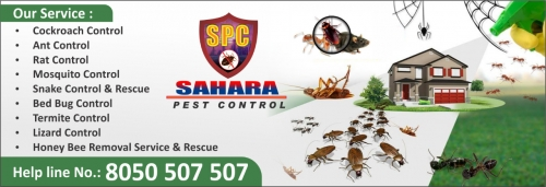 Sahara Pest Control Service Image