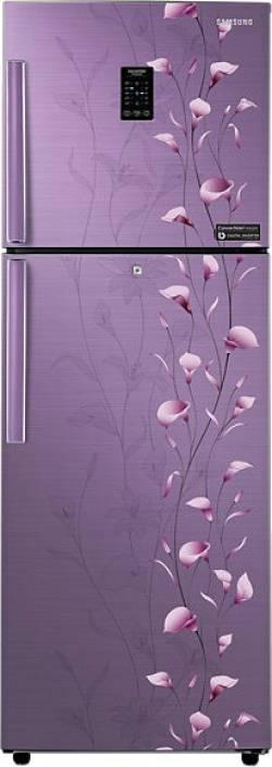 Samsung 253 L Frost Free Double Door Refrigerator (RT27JSMSAPZ) Image