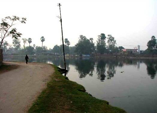 Mangal Talab - Patna Image