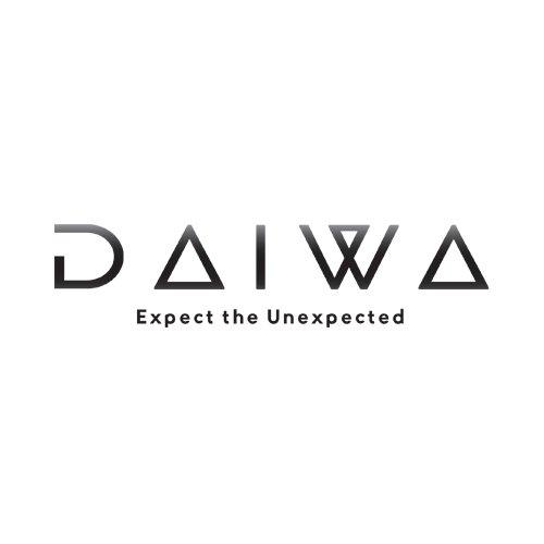 Daiwa D-2400 LED TV Image