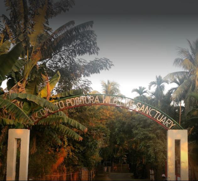 Pobitora Wildlife Sanctuary - Marigaon Image