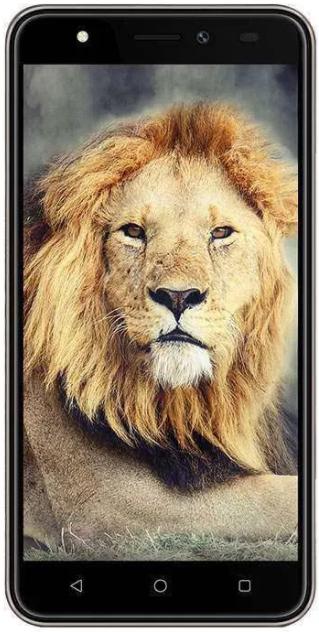 Intex Aqua Lions T1 Image