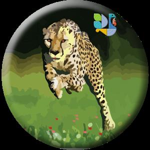 Hansa Cheetah App Image
