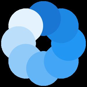 Bluecoins Image