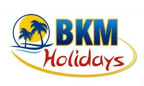 BKM Holidays - Delhi Image