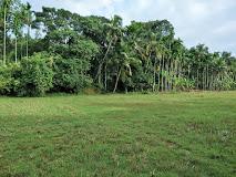 Munderi Kadavu Bird Sanctuary - Munderi Image