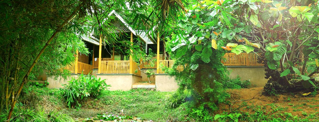 Vythiri Greens Resort - Lakkidi - Wayanad Image
