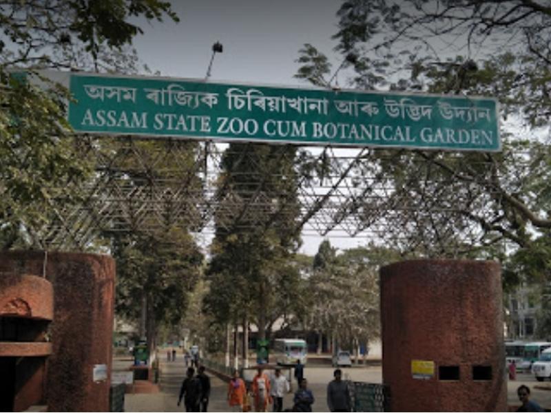 Assam State Zoo cum Botanical Garden - Guwahati Image