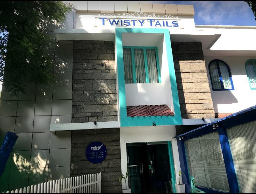 Twisty Tails - Nungambakkam - Chennai Image