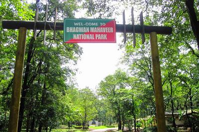 Bhagwan Mahavir (Mollem) National Park - Goa Image