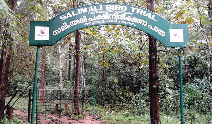 Dr. Salim Ali Bird Sanctuary - Goa Image