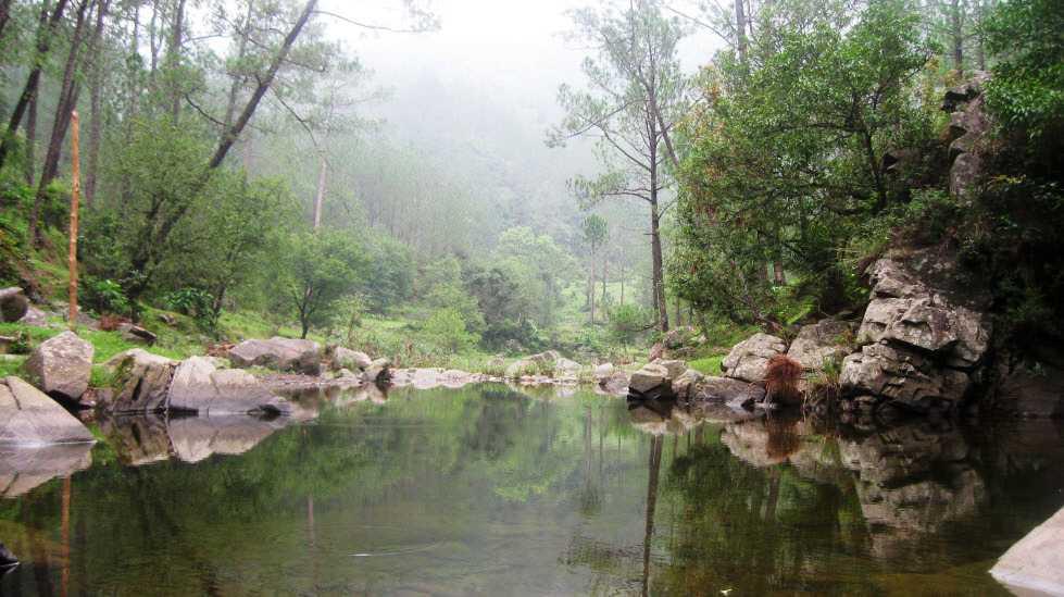 Kangojodi - Nahan Image