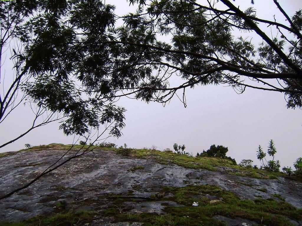 Silent Valley View - Kodaikanal Image