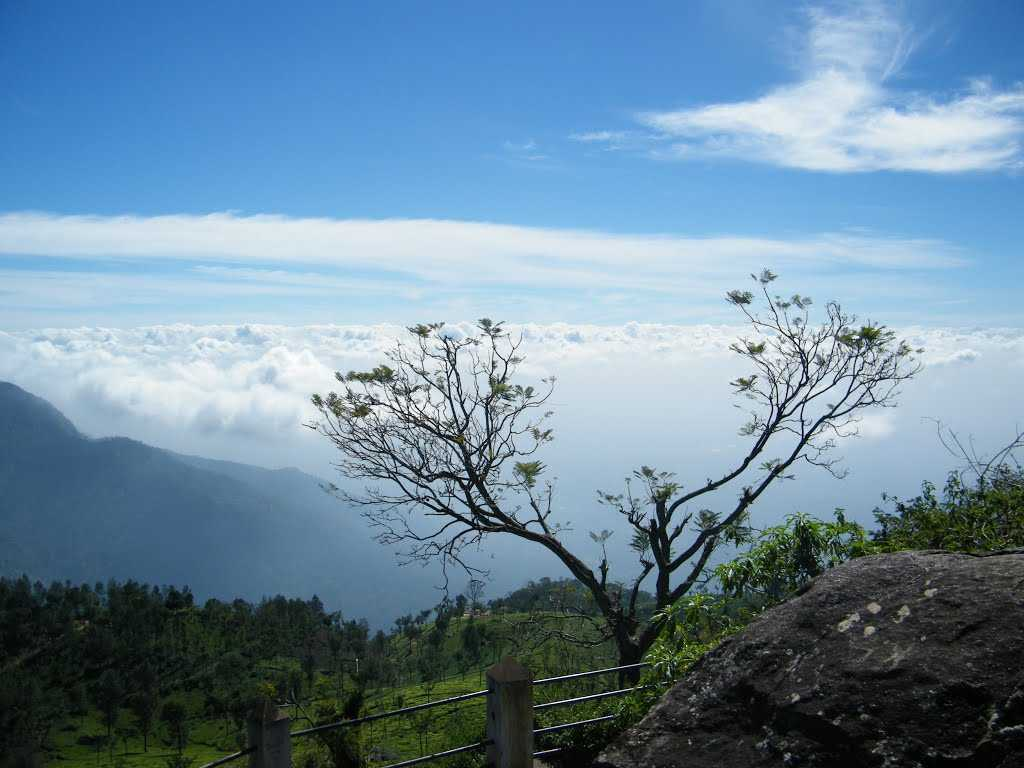 Dolphin's Nose - Ooty Image