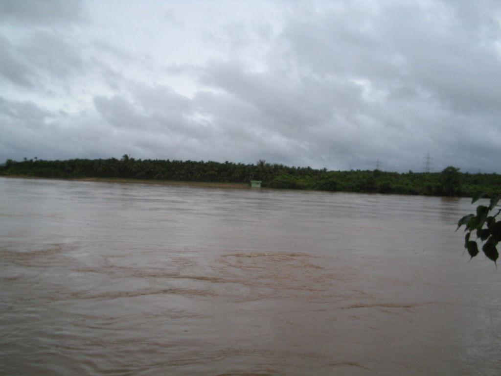 Gangamoola - Kudremukh Image
