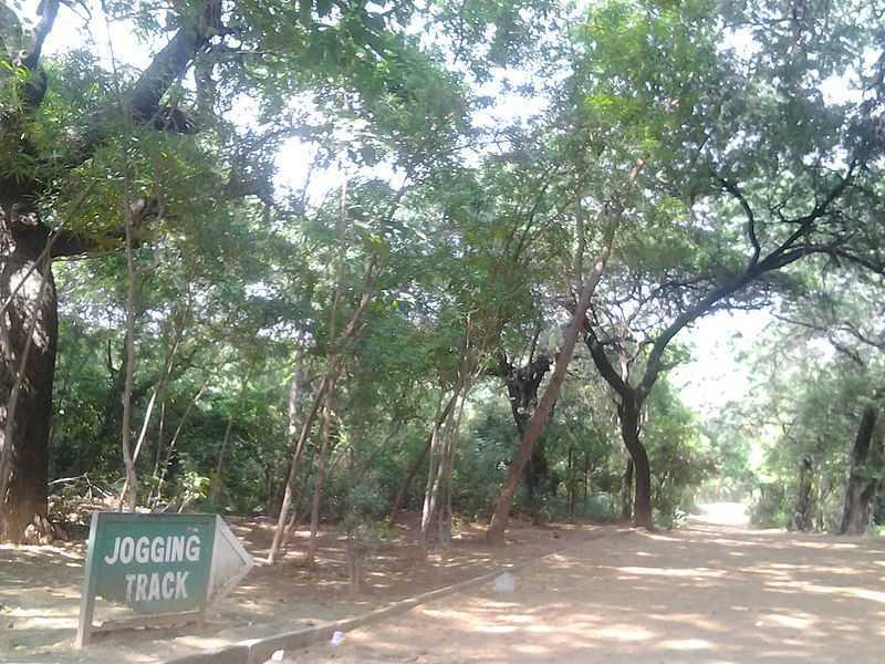 Jahanpanah City Forest - Delhi Image