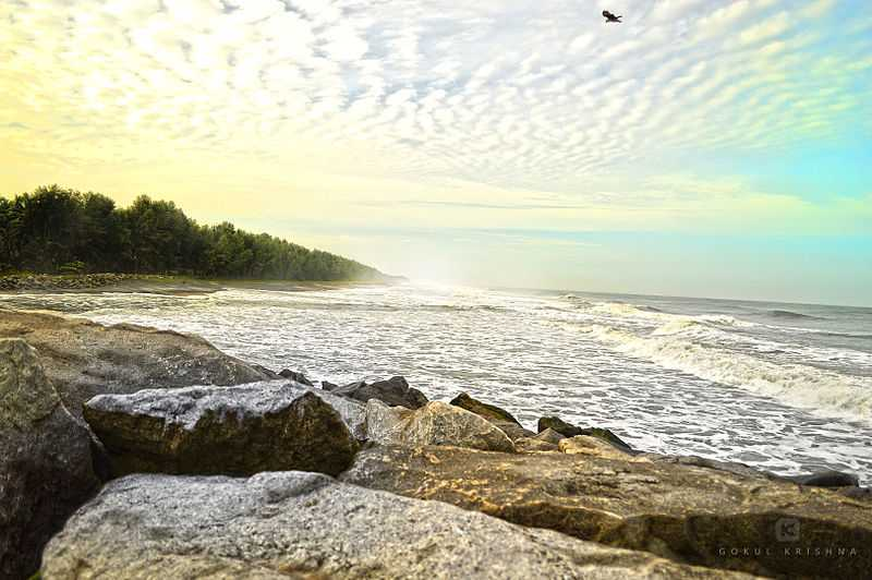 Azheekal Beach - Kollam Image