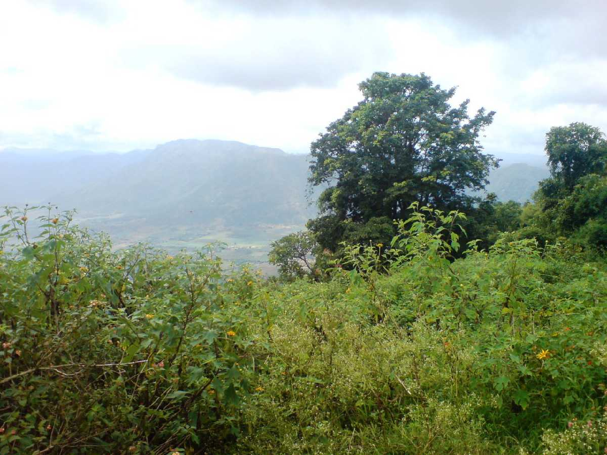 Chellarkovil Viewpoint - Thekkady Image