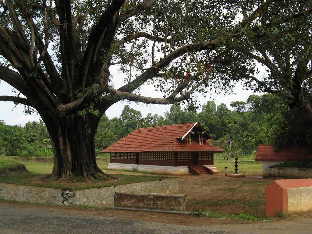 Valliyoorkavu Bhagavathy Temple - Wayanad Image