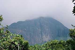 Agastya Mala - Thiruvananthapuram Image