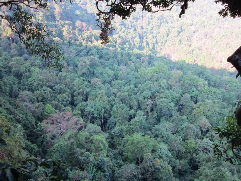Kottancheri Hills - Kasargod Image