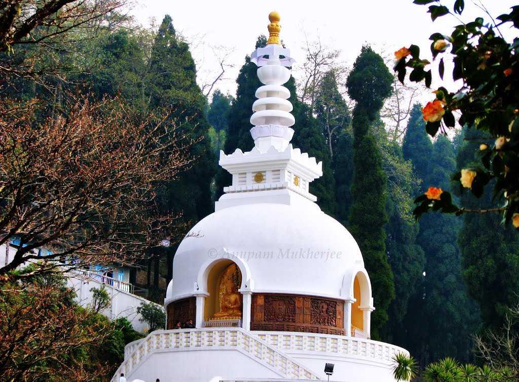 Japanese Peace Pagoda - Darjeeling Image