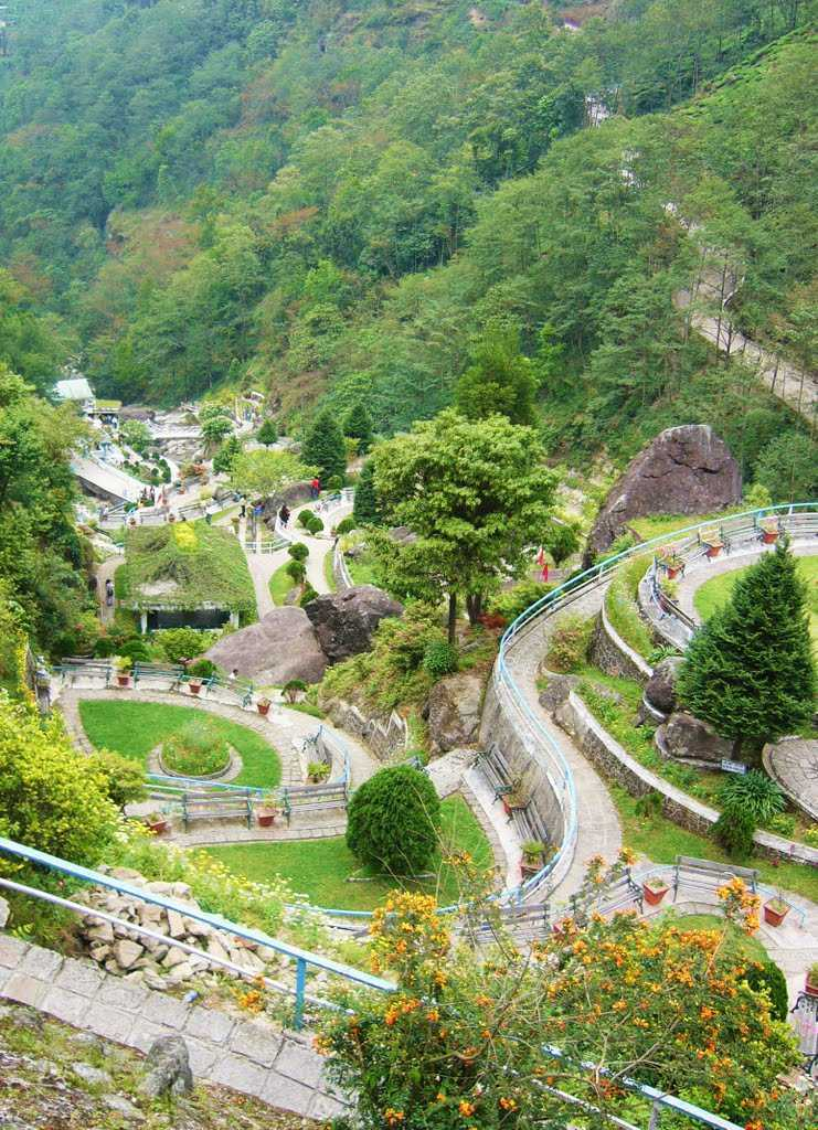 Rock Garden - Darjeeling Image