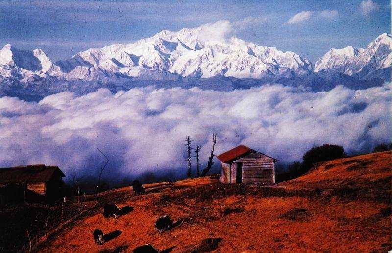 Sandakphu Trek - Darjeeling Image