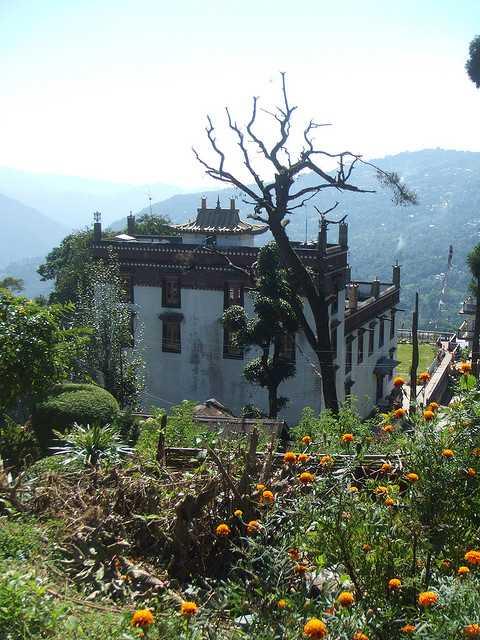 Thongsa Gompa - Kalimpong Image