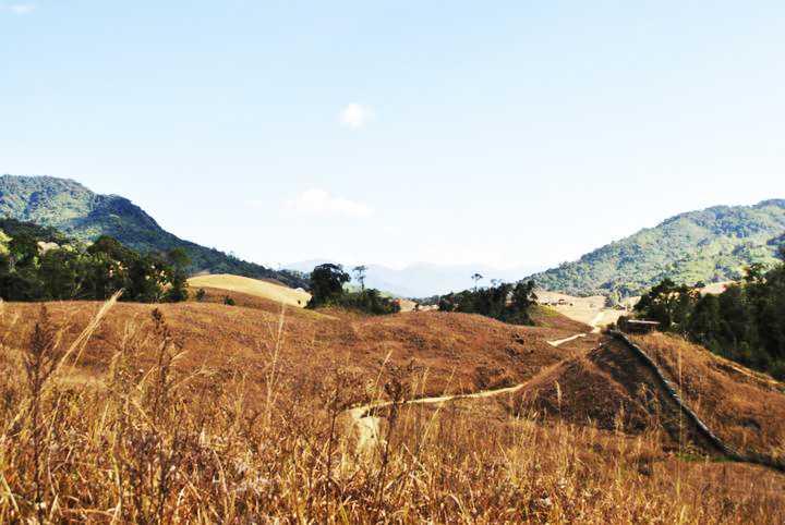 Buning Meadows - Tamenglong Image